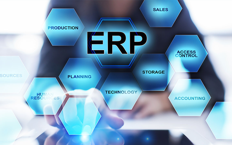 erp consulting secure ap solutions